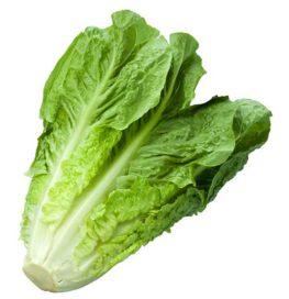 75 सब्जियों के इंग्लिश और हिन्दी नाम Indian Vegetables Names With Pictures Step 119