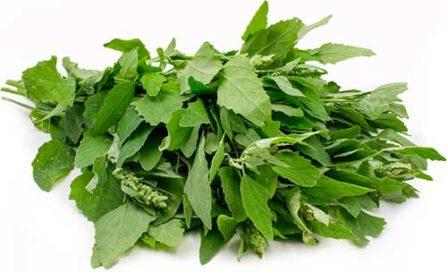 75 सब्जियों के इंग्लिश और हिन्दी नाम Indian Vegetables Names With Pictures Step 141