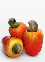टॉप 101 फलो के नाम  इंग्लिश और हिन्दी में Fruits Name In Hindi and English With Picture  Step 19