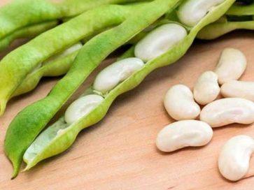 75 सब्जियों के इंग्लिश और हिन्दी नाम Indian Vegetables Names With Pictures Step 85