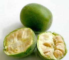टॉप 101 फलो के नाम इंग्लिश और हिन्दी में Fruits Name In Hindi and English With Picture Step 83