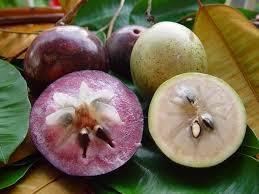 टॉप 101 फलो के नाम  इंग्लिश और हिन्दी में Fruits Name In Hindi and English With Picture  Step 135
